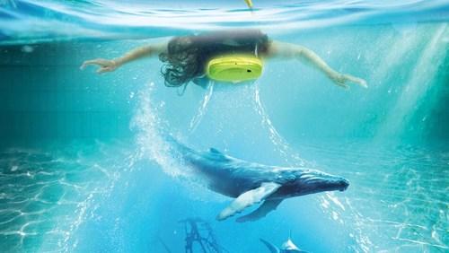 VR Snorkelling v Aquapalace Praha
